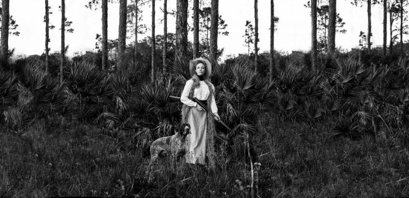 POSTPONED: In the Pines